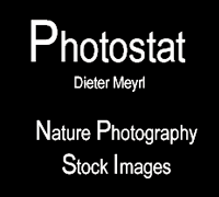 Nature Photography & Stock Images